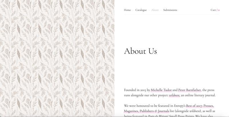 screenshot of publisher's website